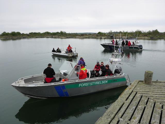 Kolme venettä täynnä ihmisiä lähdossä laiturista merelle päin.