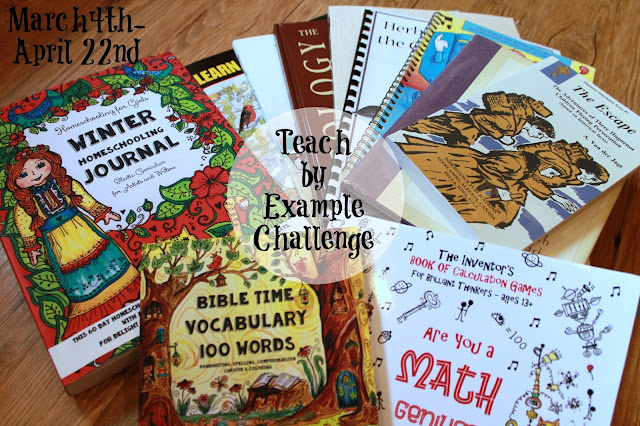 Teach by Example Mom School Challenge