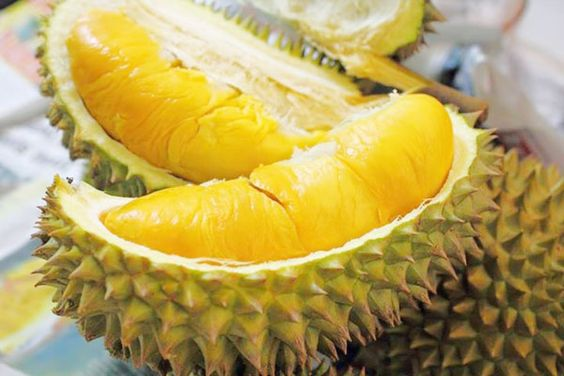 Durian (Sầu Riêng) - typical fruit in southern Vietnam.