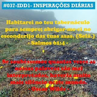037-IDD1- Ideia do Dia 1