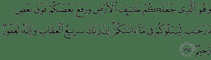 Surat Al-An'am Ayat 165