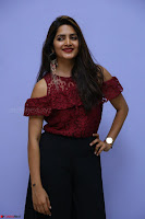 Pavani Gangireddy in Cute Black Skirt Maroon Top at 9 Movie Teaser Launch 5th May 2017  Exclusive 058.JPG