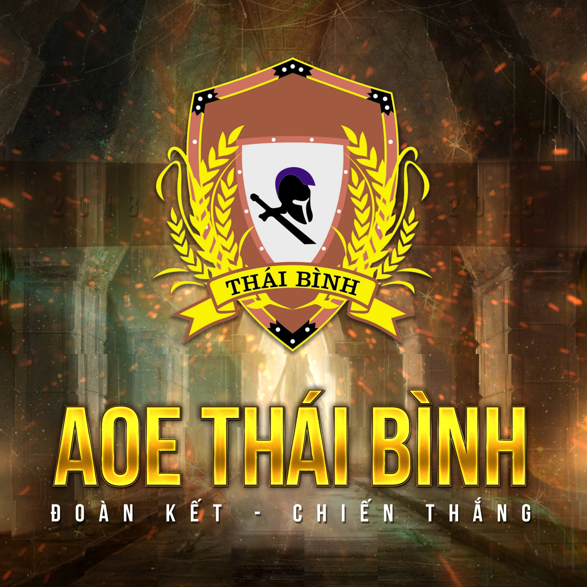 AOE Thái Bình