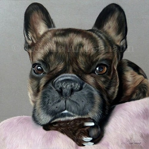 03-French-Bulldog-Frenchie-Lorine-Angelmann-Cool-Realistic-Animal-Drawings-www-designstack-co