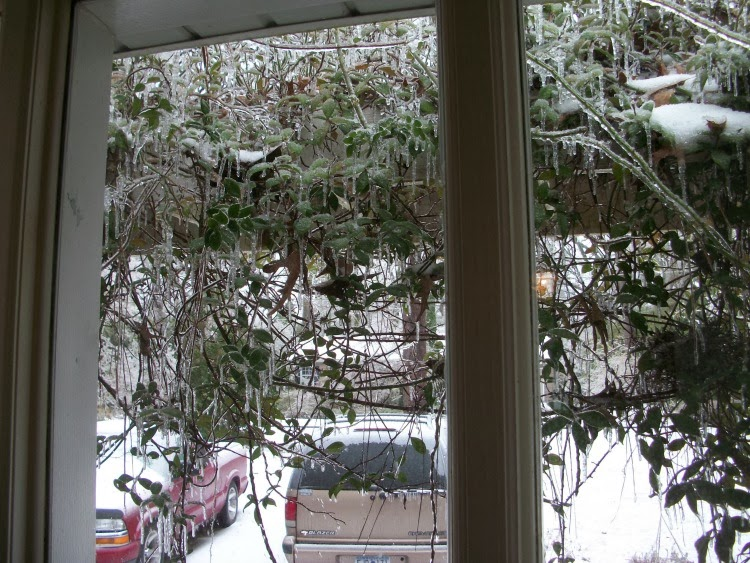 Southern Ice storm, Jim Cantore
