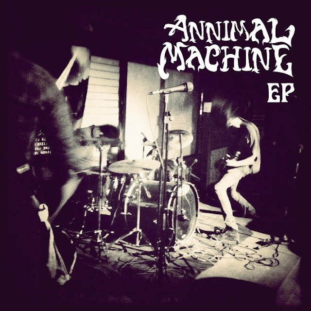 [Quick Fixes] Annimal Machine - Annimal Machine EP