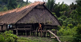 Harmony In The Traditional Village Of Siberut Island In Indonesia