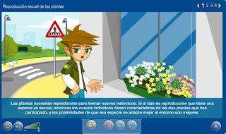 http://capitaneducacion.blogspot.com.es/2017/11/3-primaria-ciencias-de-la-naturaleza_24.html