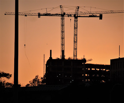 Duo of Cranes silhouetted against evening sky