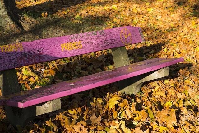 ảnh ghế mùa thu đẹp