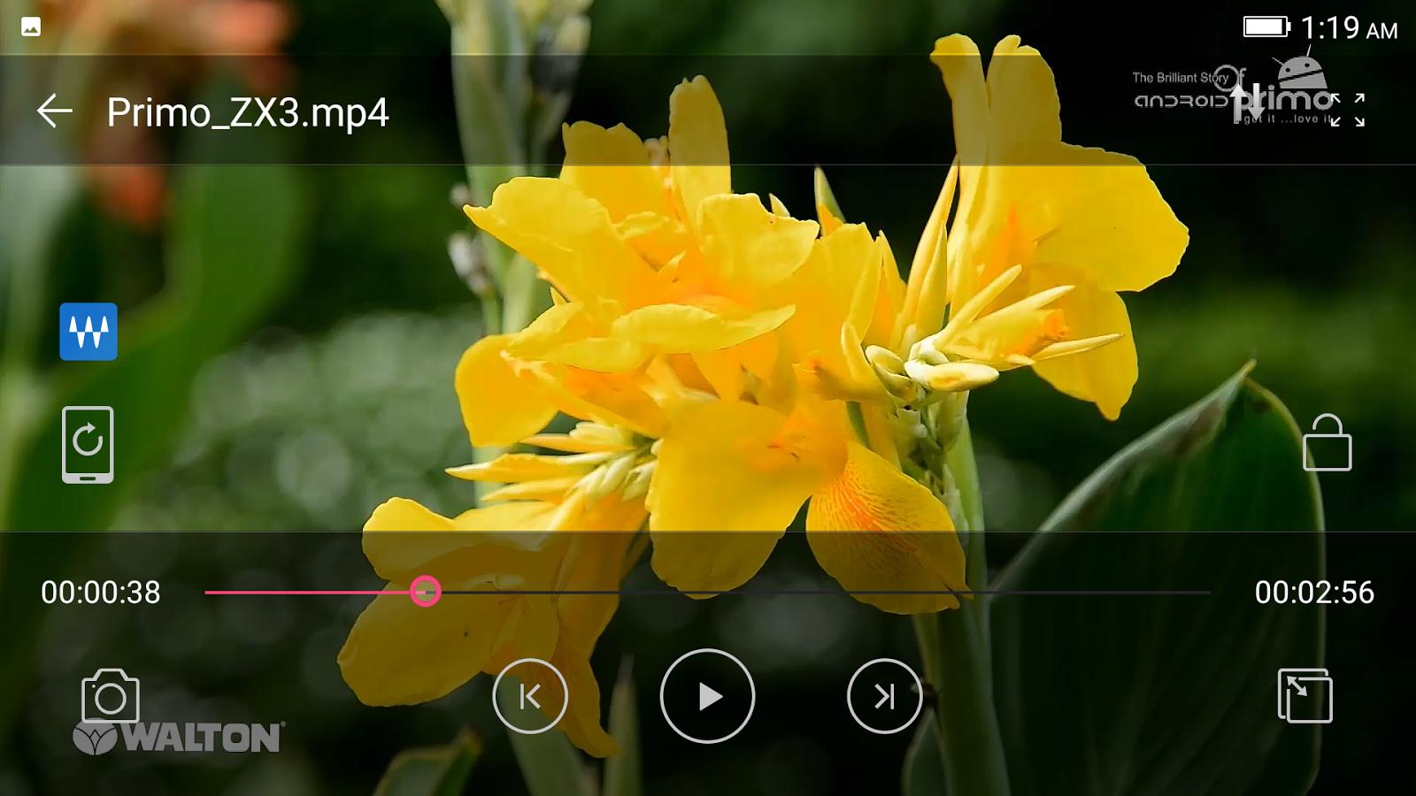 Primo ZX3 video review হ্যান্ডস-অন রিভিউঃ ডুয়েল রেয়ার ক্যামেরার Walton Primo ZX3