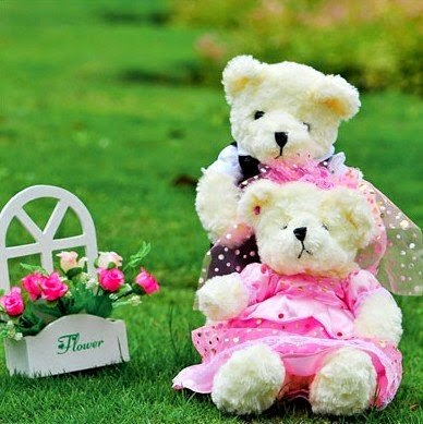 Teddy Bear with Flowers Wallpapers