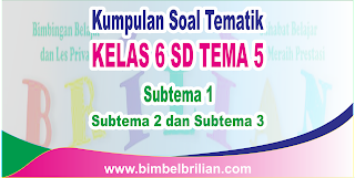 Kumpulan Soal Tematik Kelas 6 SD Tema 5 Wirausaha  ( Subtema 1, 2 dan 3 ) Dilengkapi Kunci Jawaban