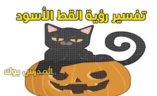 رؤية القطة السوداء في المنام للمرأة العزباء