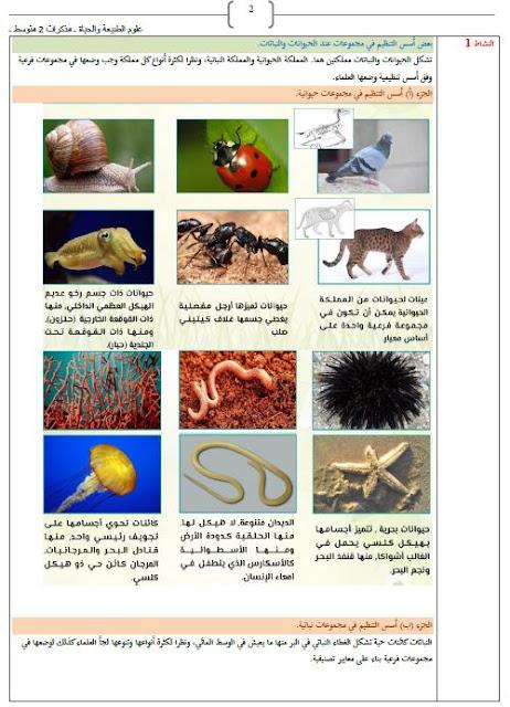 مذكرات معايير التصنيف عند الحيوانات و النباتات للسنة الثانية متوسط علوم طبيعية