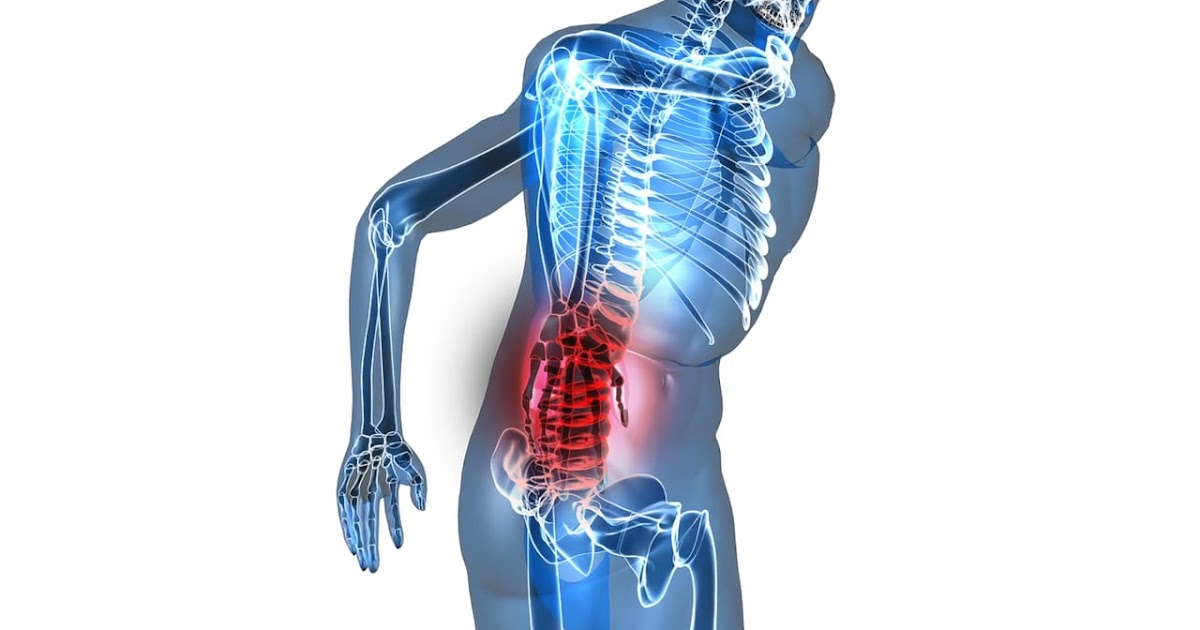 Fikri Indrajaya Muscles And Nerves In Back Pain