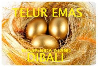 Nusa Penida Tour Packages, Nusa Penida Telur Emas Bali, Paket Tour Nusa Penida
