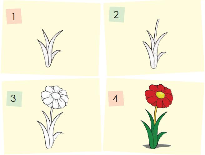 Cara Menggambar Bunga, Pohon, dan Mobil Sederhana (Tahapan-Tahapannya)