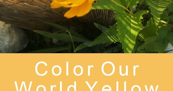 A GUIDE TO NORTHEASTERN GARDENING: Color Our World Round ...