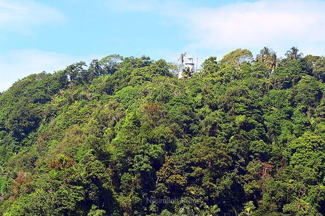 Puncak Mercusuar Cimiring terlihat di antara pepohonan