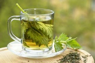 cara mengolah teh daun seledri, cara merebus teh daun seledri, manfaat teh daun seledri,, cara memasak teh daun seledri