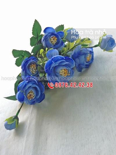 Phu kien hoa pha le tai Ngo Thi Nham
