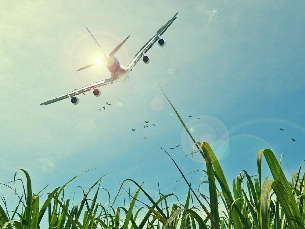 Cara Mendapat Tiket Pesawat dengan Harga Miring