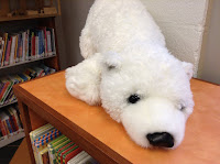 Stuffed polar bear sitting on a shelf with books in the background