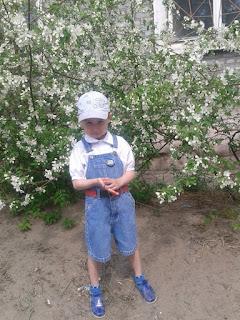 Цветущая яблоня и ребёнок