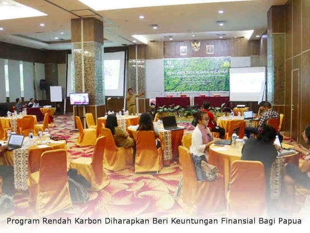 Program Rendah Karbon Diharapkan Beri Keuntungan Finansial Bagi Papua