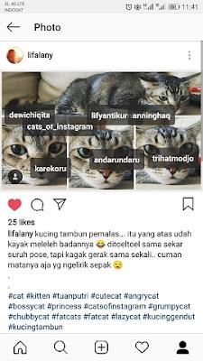 Cara Menghapus Tag Akun Instagram di Foto