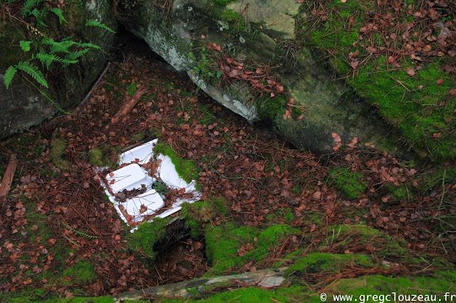 Comment faire caca dans les bois ?, Fontainebleau, Trois Pignons