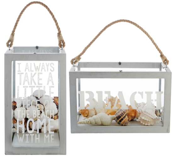 Beach Shell Wood Collection Display Boxes