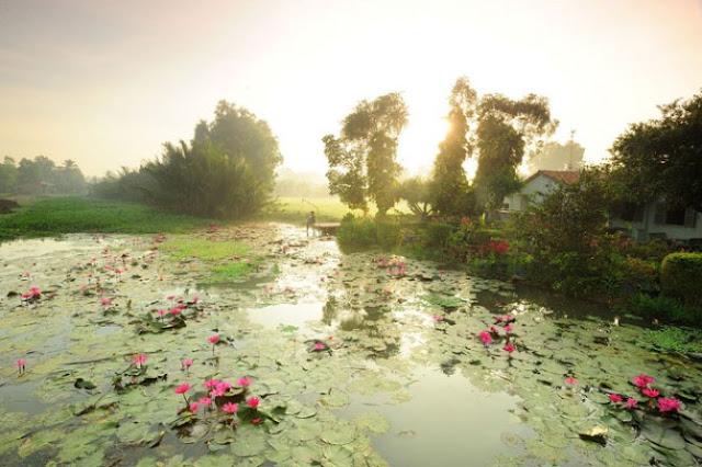 Đất nền khu đô thị sinh thái năm sao - Phú Mỹ Hưng 2.