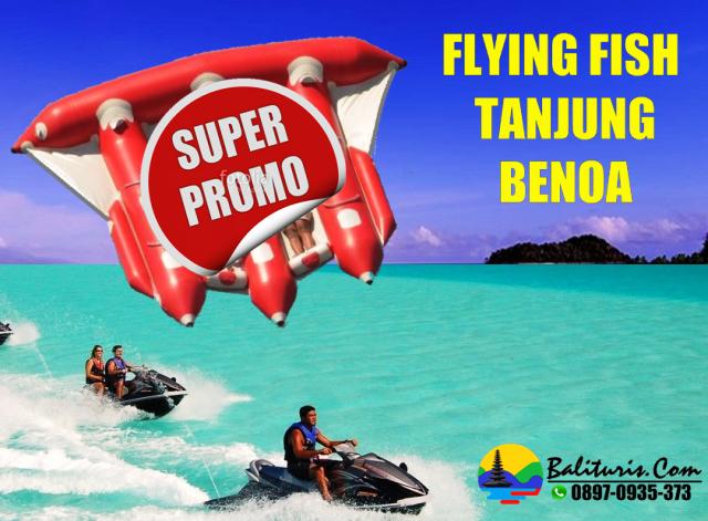 SEWA flying fish tanjung benoa, HARGA SEWA FLYING FISH TANJUNG BENOA BALI