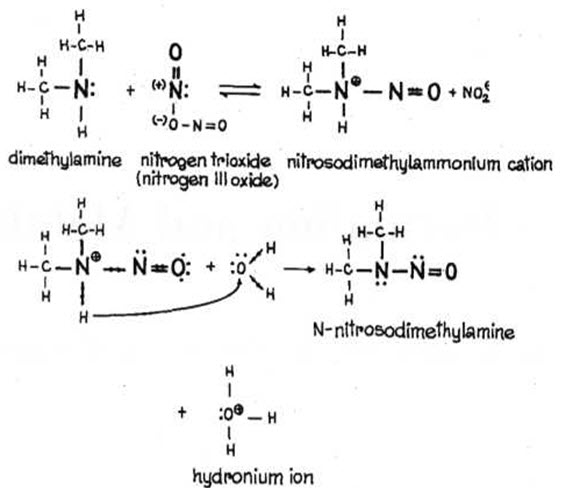 FORMATION OF NITROSO AMINES FROM SECONDARY AMINES