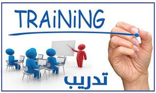 إستكمالاً لمسيرة توفير المنح التدريبية لشباب المحافظة للتأهيل و التدريب لمواكبة إحتياجات المشروعات المستقبلية بالمحافظة فى مجالات الموانئ و اللوجستيات و الأنشطة الصناعية .