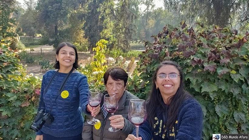 Segunda degustação na Vinícola Concha y Toro - Vinícolas chilenas