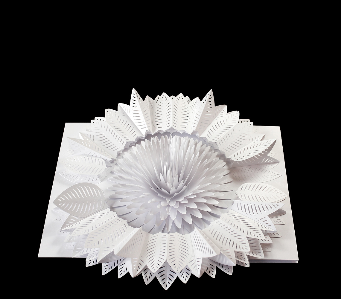 05-Peter-Dahmen-3D-Paper-Construction-Pop-Up-Cards-Videos-www-designstack-co