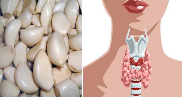 tratament tiroida cu ajutorul usturoiului
