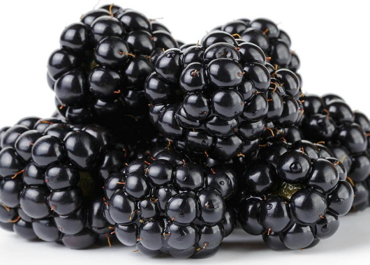 blackberries cancer prevention power