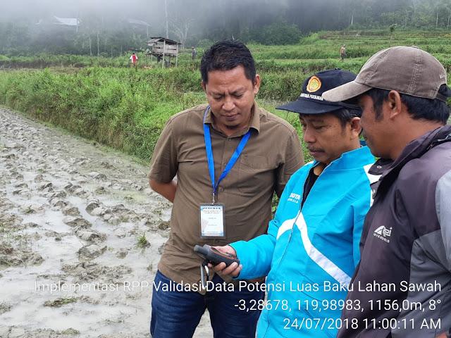 Lahan Sawah Sudah Banyak Beralih Fungsi, Dinas Pertanian Tana Toraja Lakukan Pengukuran Ulang