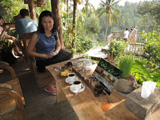 All About Bali Enjoy the civet coffee in Bali pulina agro-tourism