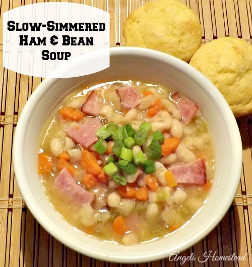 Slow Simmered Ham and Bean Soup
