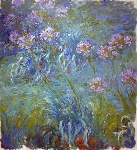 Agapantos - Monet
