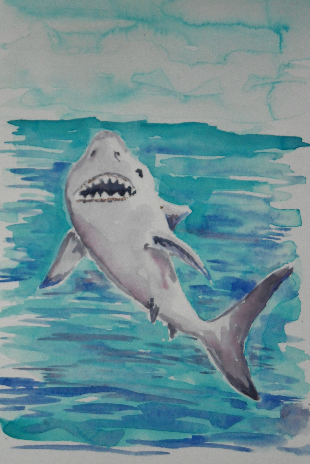 how to draw worksheets for the young artist how to draw a shark