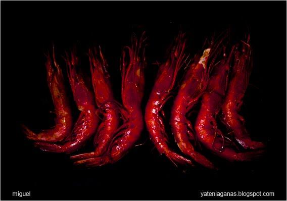 dietas para adelgazar el abdomen enfemenino diana