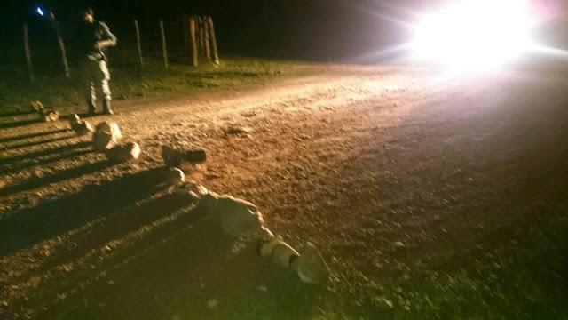 pedras na estrada vicinal da Lapa