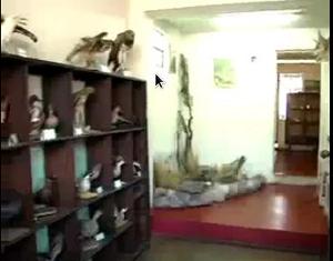 Museo Forestal de la Policía Ecológica