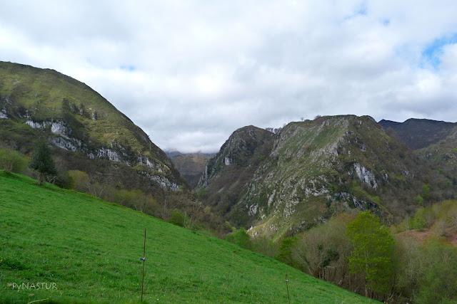 Foz del Río Color - Piloña - Asturias